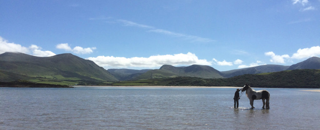 View from the beach, 1 km from Wild Atlantic House